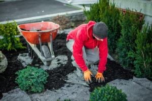Landscaper Preparing for Plantation